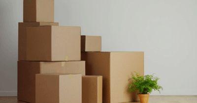 ТОП 5 производителей картонной упаковки во Владимире